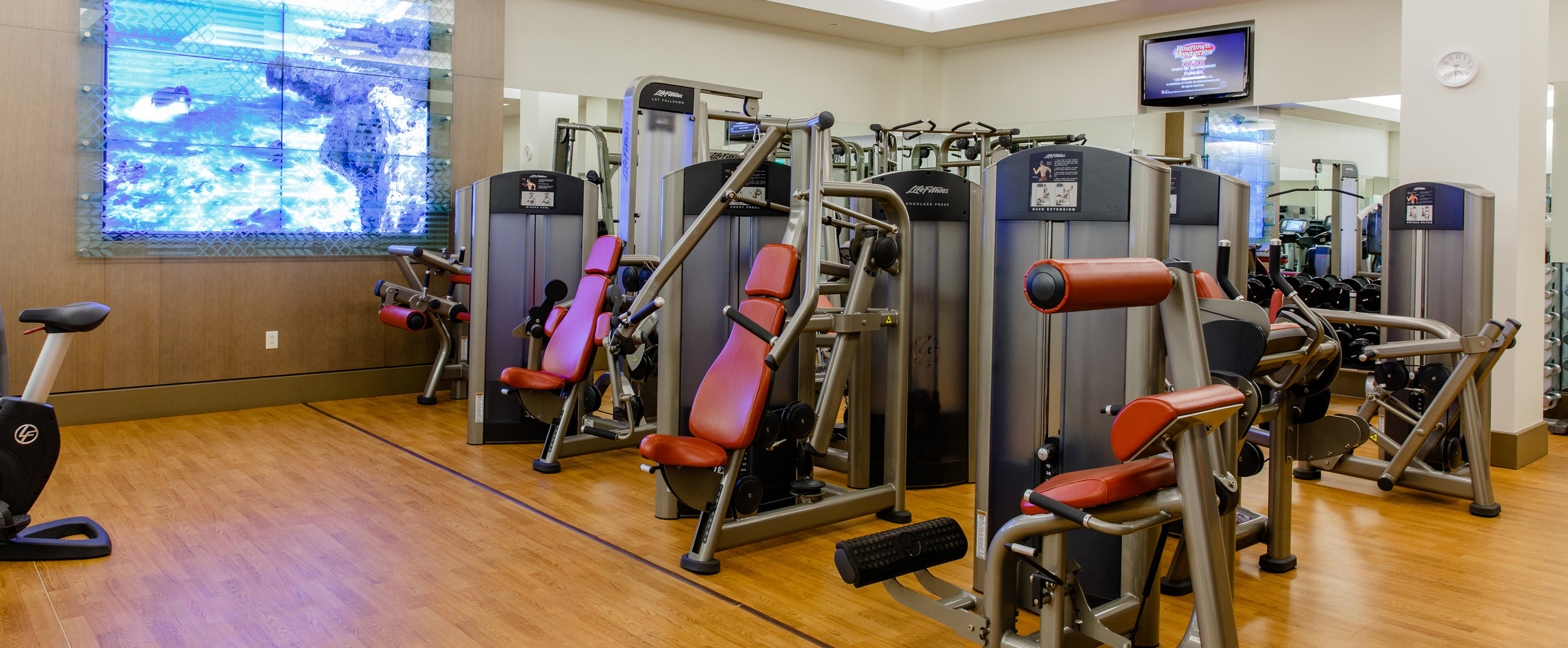 aulani-laniwai-spa-and-fitness-center-equipment-machines-presses-g.jpg