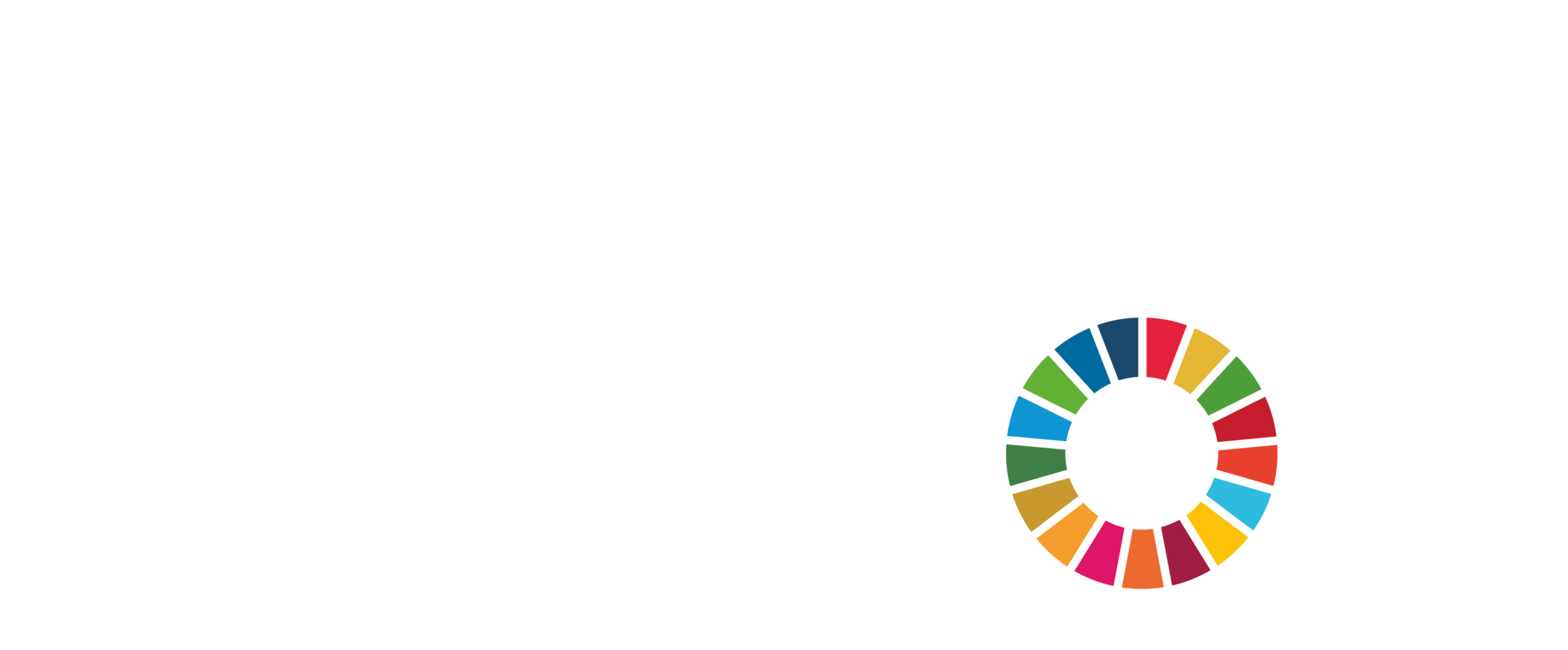 United For 2030 - Logo - W - Stacked.png