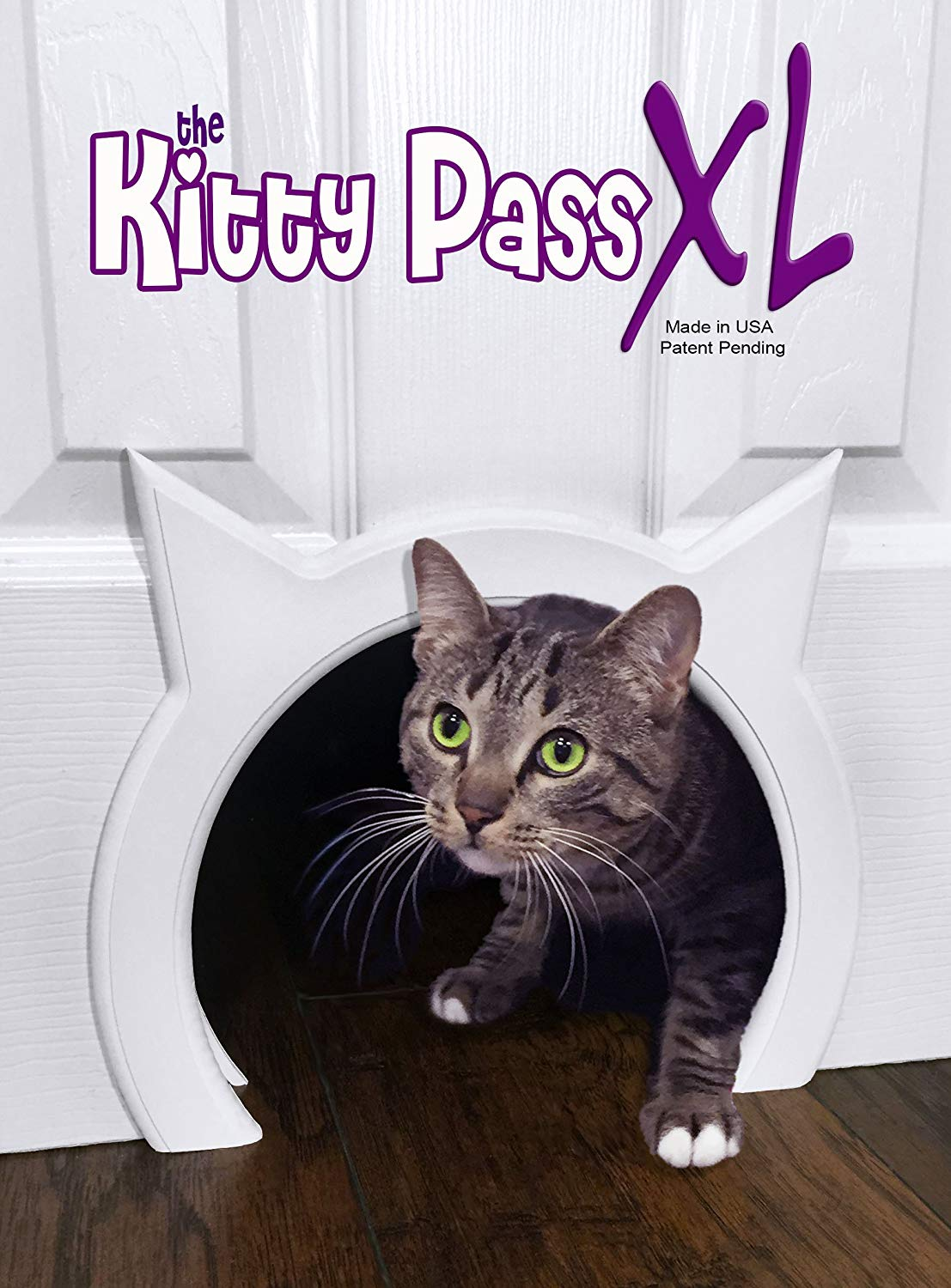Wilmington NC kitty pass life with pets organize your home