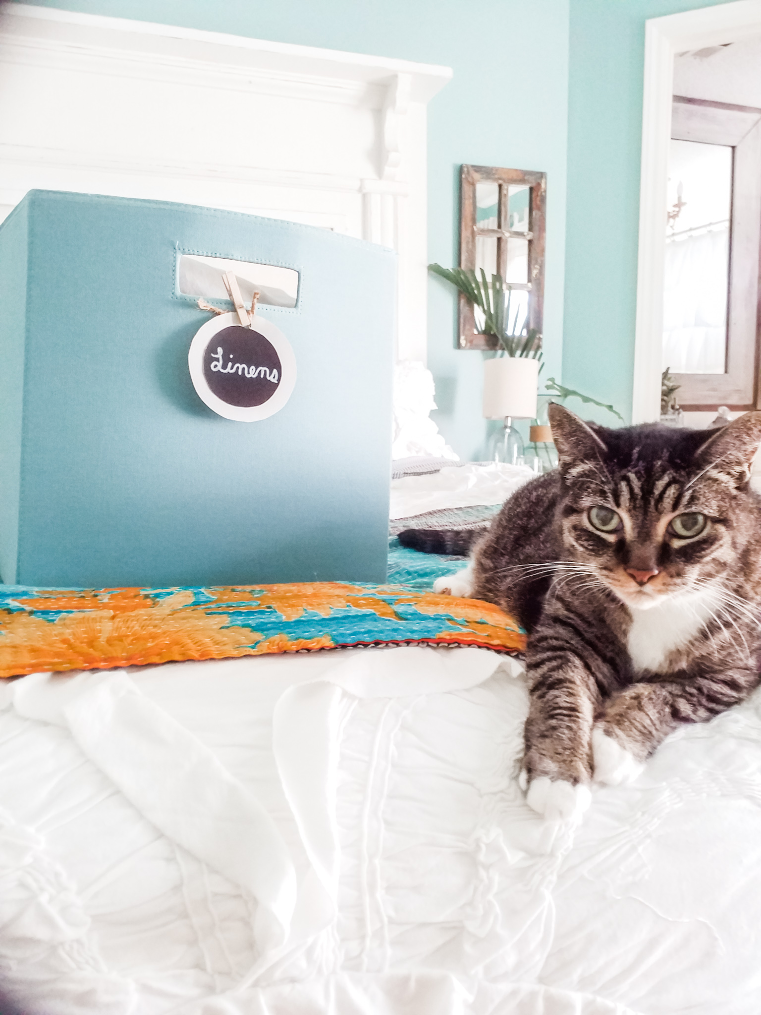 organizing linens and cat.jpg