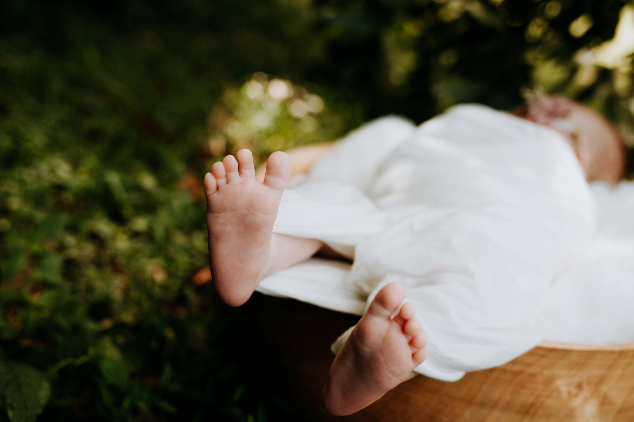 Marissa Sorrell Photography Tennessee Newborn photographer