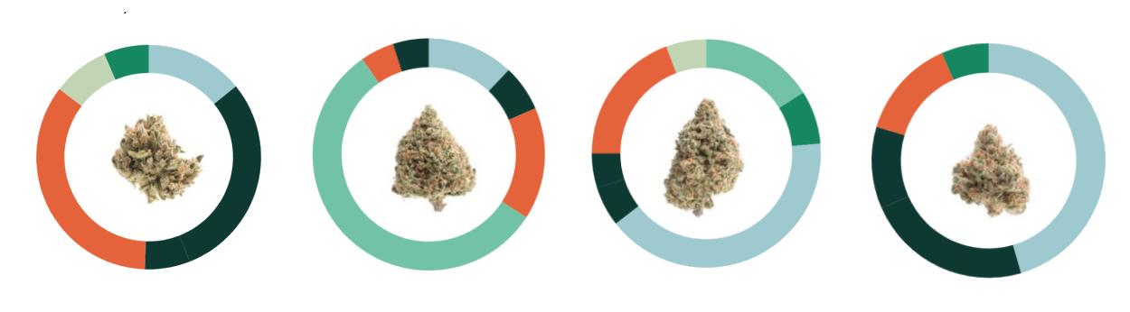 5-weed-bbs.png