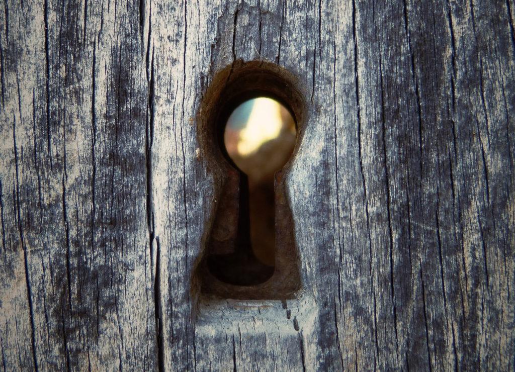 door-1024x740.jpg