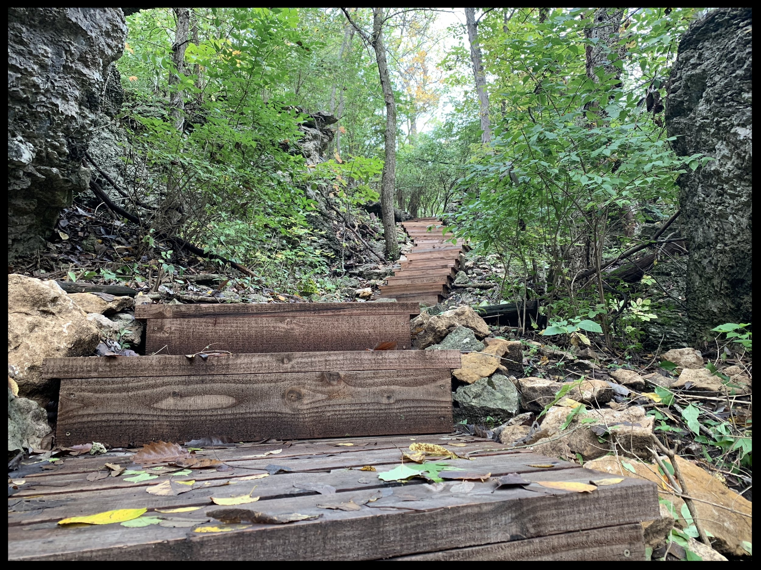 Walking Trails - OVER 9 MILES ON WHICH TO WANDERThe Neighborhoods of Winterset boast over 9 miles of walking trails through naturally beautiful wooded areas. There are also numerous
