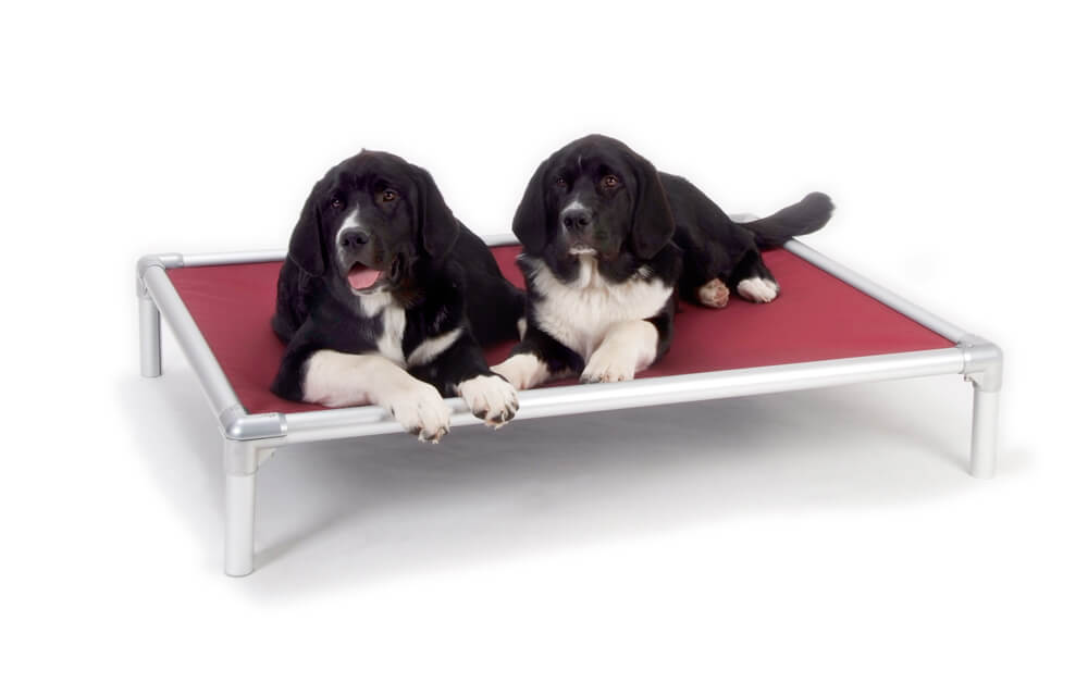 Kuranda Orthopedic Dog Bed