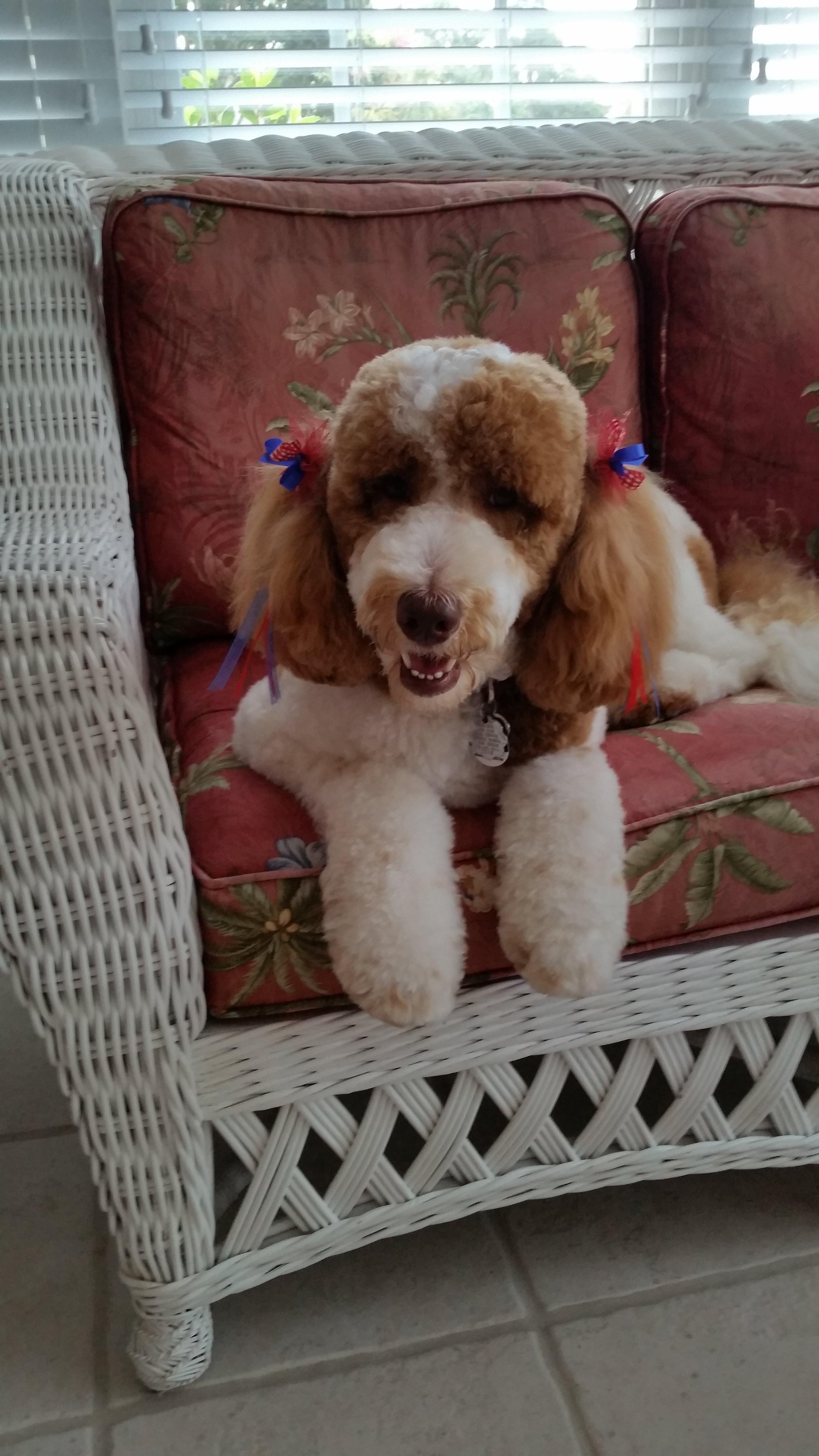 Cianna 11mths Happy Girl.jpg