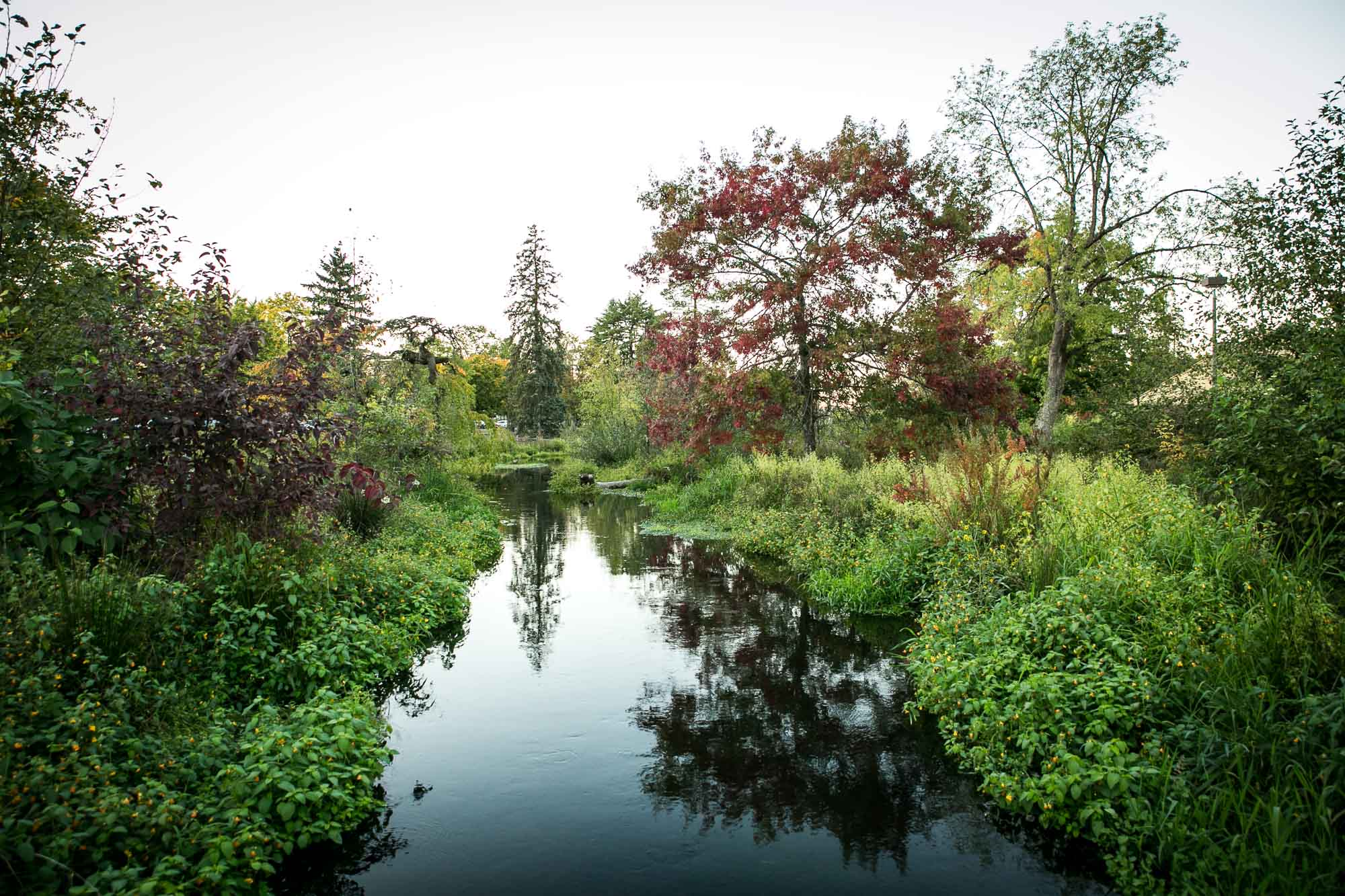 visit-sellwood-moreland-business-alliance_westmoreland-park-5.jpg