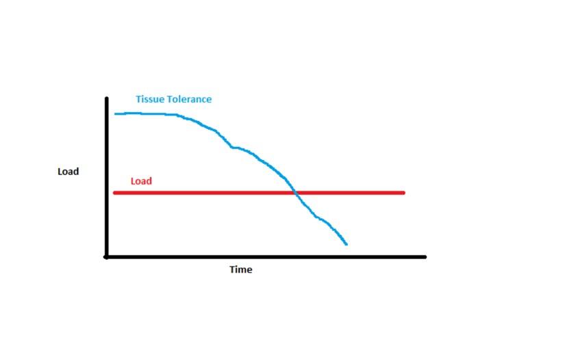 tissue change over time.jpg