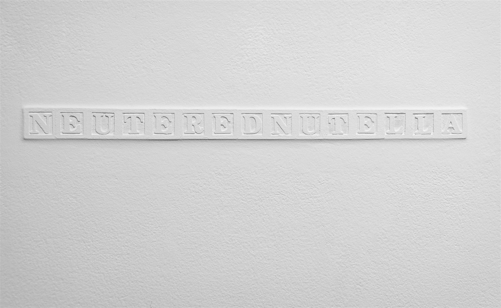 "NEUTEREDNUTELLA   Alphabet blocks embedded in drywall, wall paint  1¼ x 17¾""/ 2012"