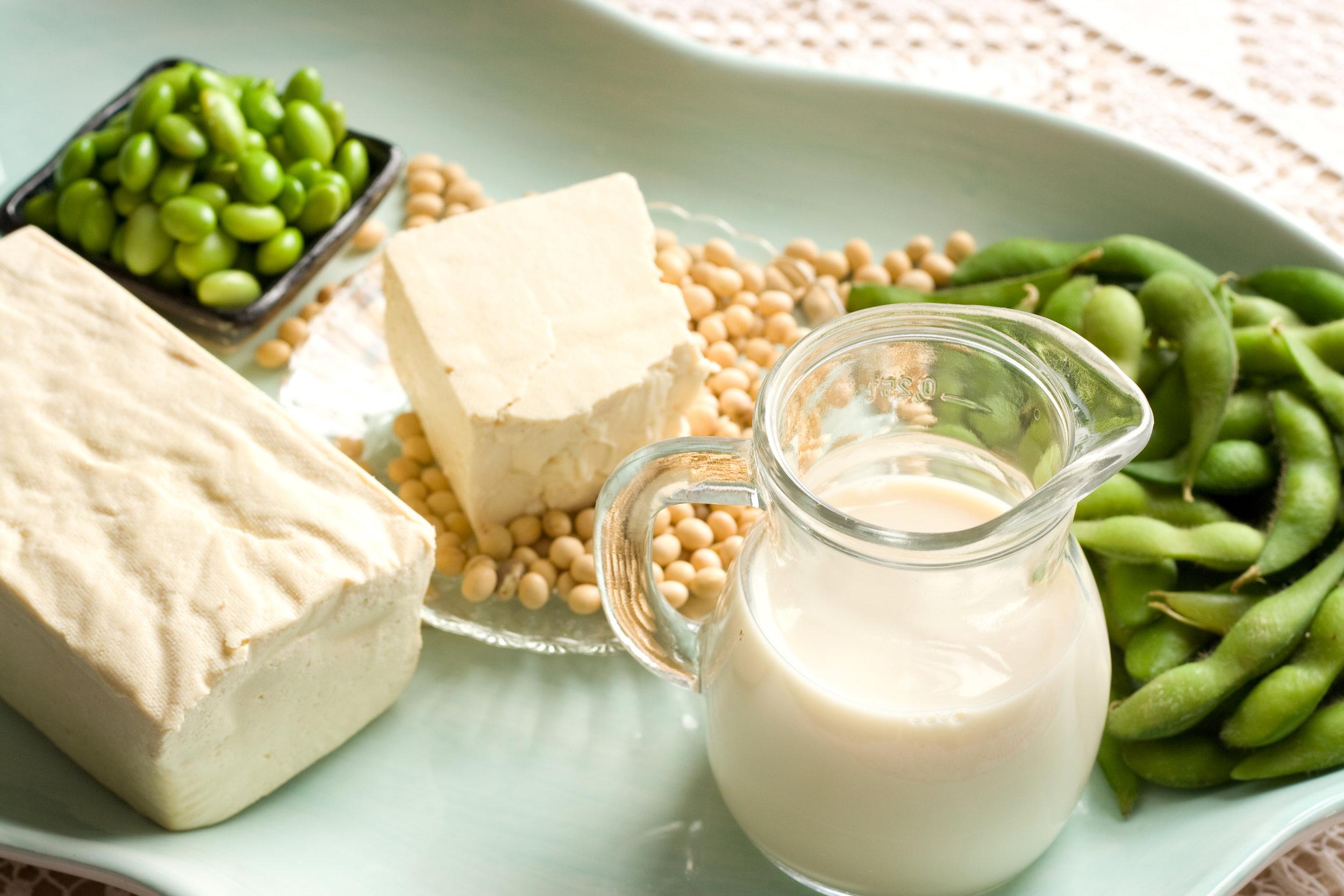 whole soy foodsjpg