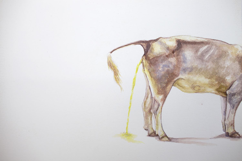 Vaca meando   2018  Acrílico sobre papel  35 x 50cm