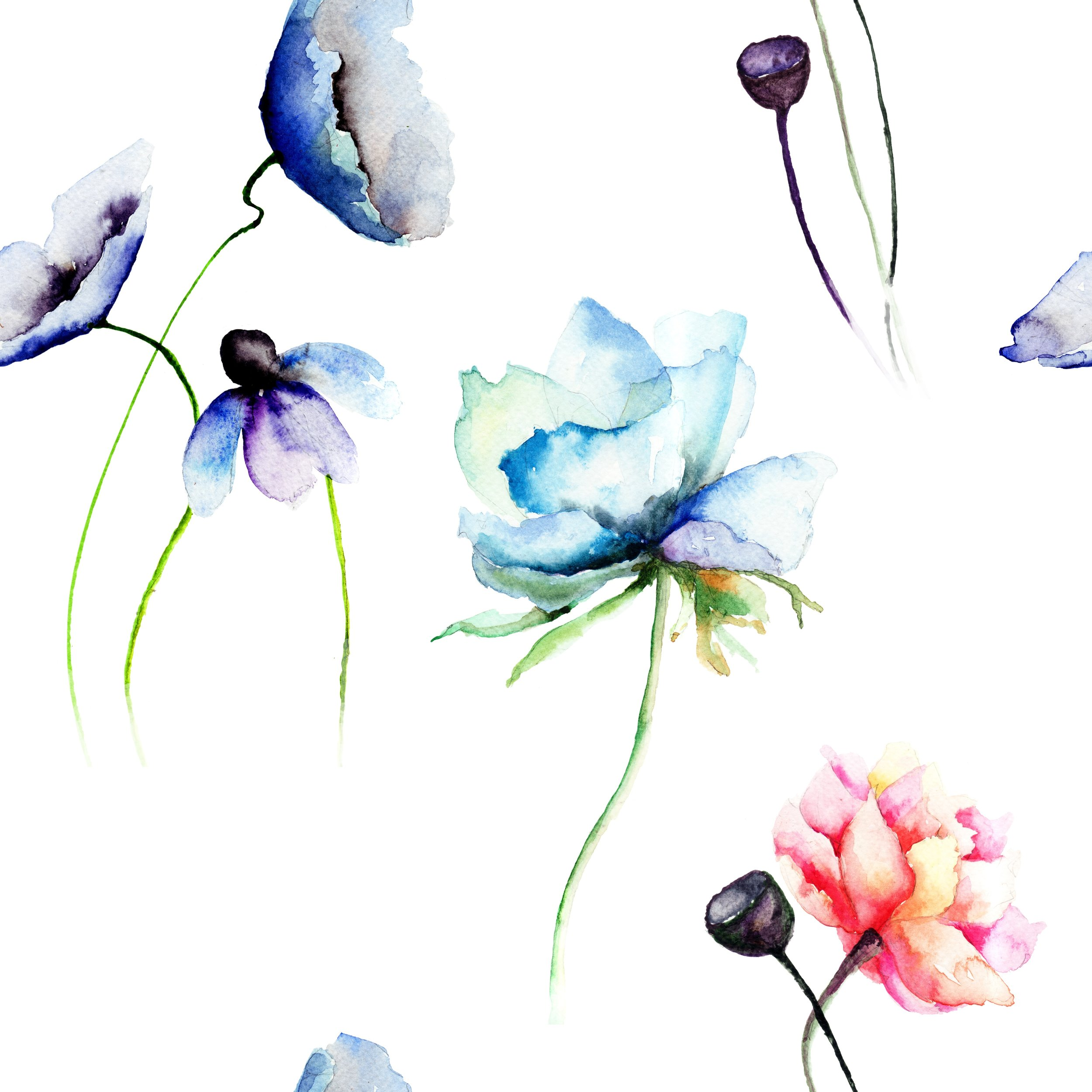 SUMMER WEEK 8 - Aug 19th - Aug 23rd - Wonderous Watercolours.  AGES 9-12.  Learn the versatile & wonderful techniques of watercolours. This is a perfect medium for so much fun whether it be magical landscapes, fantastical creatures, beautiful landscapes & more.