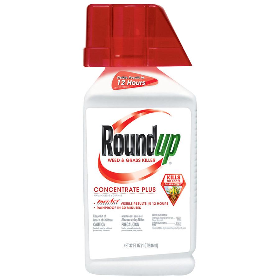 Roundup.jpg