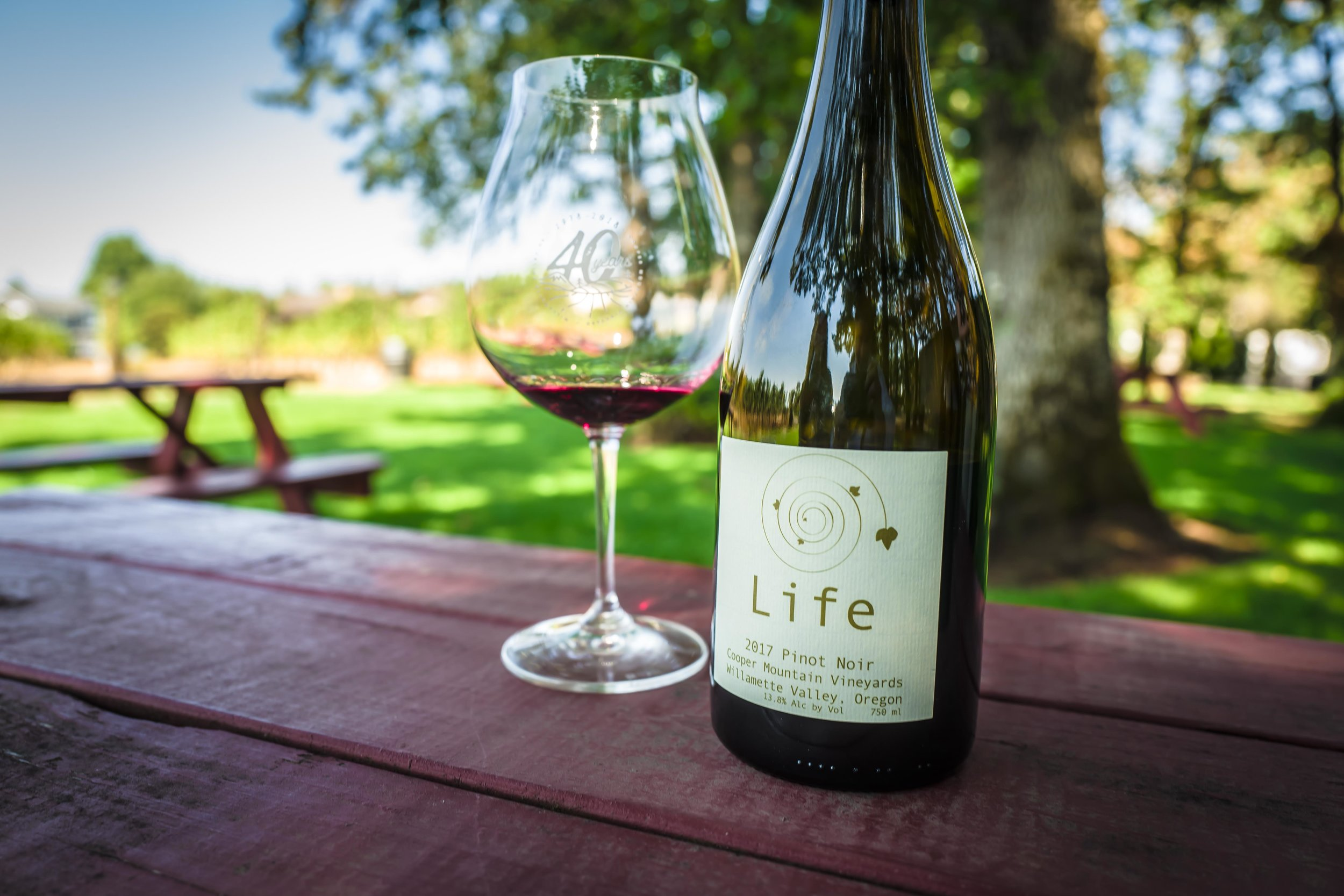 "2017 LIFE Pinot Noir - a non-sulfite natural wine of Pinot, deep ruby in color and has a quite tannic structure which carries the weight in depth with a nice blend of red and black fruit flavors, they believe this wine is ""a purest expression of the terroir and an expression of life"", hence the name LIFE"