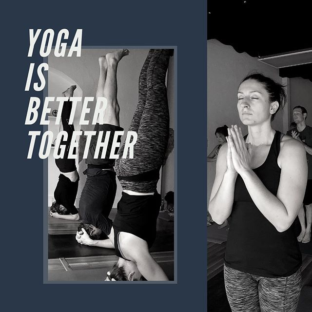 "Yoga is better together! When you and a friend book a class, us the code ""BUDDY"" and get $5 off your drop-in. Ashley will be teaching tonight at 5:45, so why not book your first class with her? Ashtanga Vinyasa is a great introduction to the primary series, perfect for new practitioners or anyone looking to deepen their understanding of the Ashtanga Yoga System. ∙ We are located in the heart of Downtown Toledo on the edge of the Warehouse District and hold classes 7 days a week, so you're sure to find something to fit into your day! Visit our website (link in bio) to view our schedule and sign up OR download the free Vagaro app. ∙  #ashtanga #yoga #ashtangayoga #namasteintoledo #Toledo #toledoohio #youwilldobetterintoledo #vinyasa #primaryseries #darkandearly #bringyourasstoclass #praticeandalliscoming #breath #bandha #dristi"