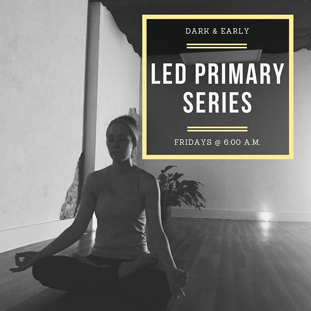 Join us on Friday morning for Led Primary Series Ashtanga. We devote one day a week to a led practice so that newer students can become more familiar with the sequence as a whole and for ALL practitioners to #cleanitup ∙ We are located in the heart of Downtown Toledo on the edge of the Warehouse District and hold classes 7 days a week, so you're sure to find something to fit into your day! Visit our website (ToledoAsanaRoom.com) to view our schedule and sign up OR download the free Vagaro app. ∙  #ashtanga #yoga #ashtangayoga #namasteintoledo #Toledo #toledoohio #youwilldobetterintoledo #primaryseries #bringyourasstoclass #praticeandalliscoming