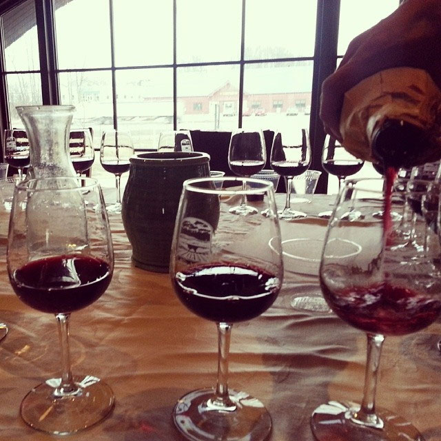 shelburne-vineyard.jpg