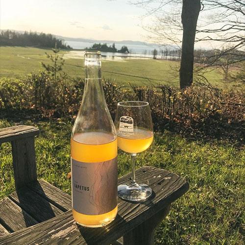 shelburne-vineyard-500px.jpg