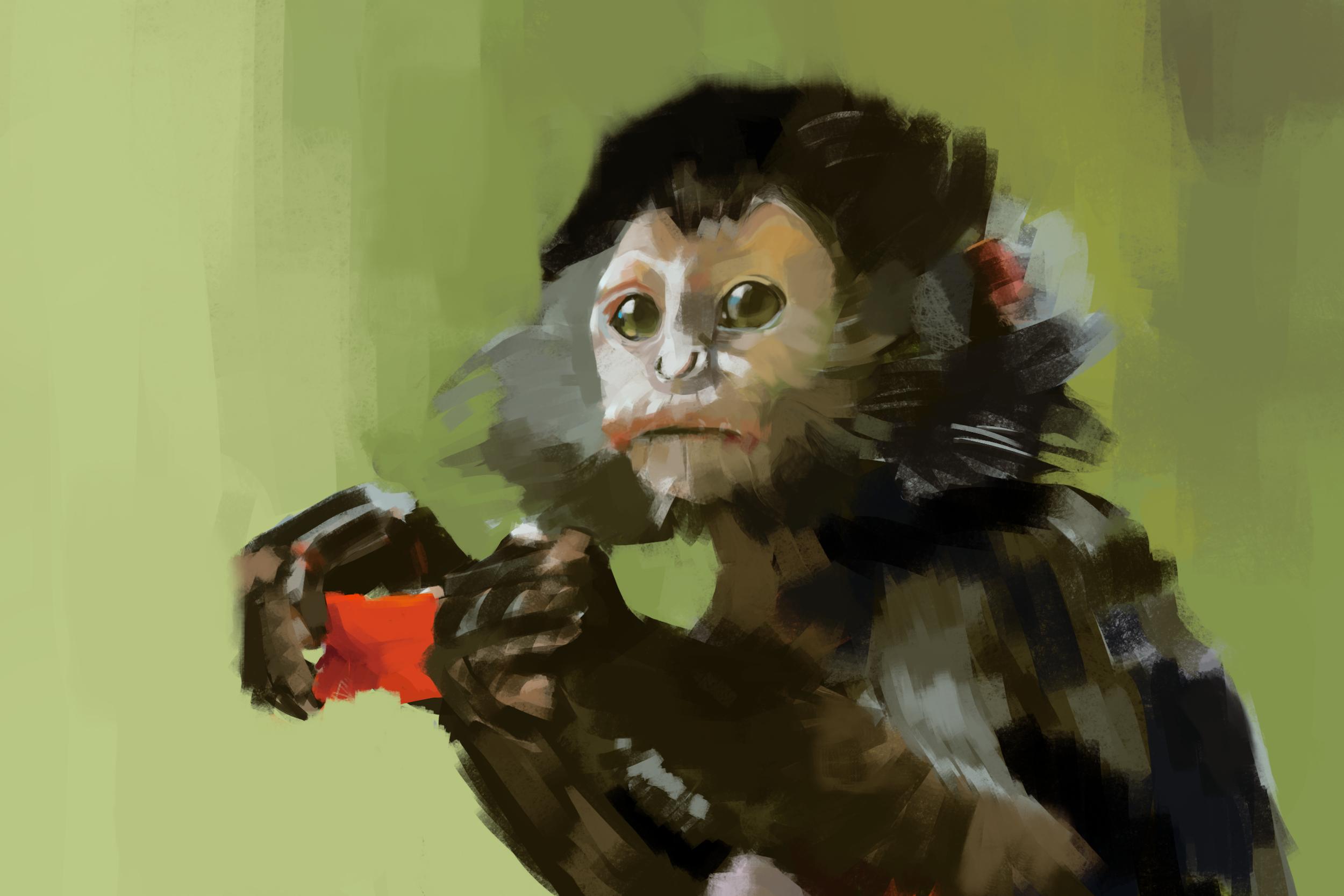 study_monkey_2h.png
