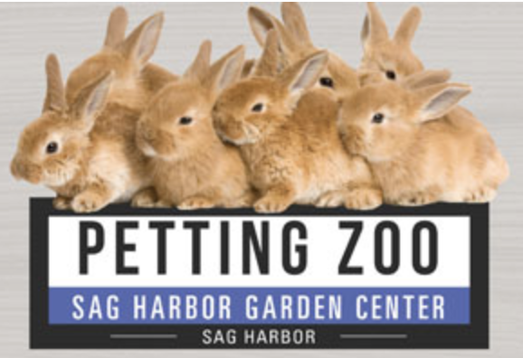 Petting Zoo   Come celebrate spring with the farm animals at The Sag Harbor Garden Center.  Sponsored by the Sag Harbor Garden Center.   Check the SHKids Calendar for Event date.    https://sagharborchamber.com/events/petting-zoo/