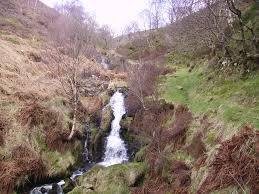 One of the many cloughs, steep river banks in the Pennine Mountains