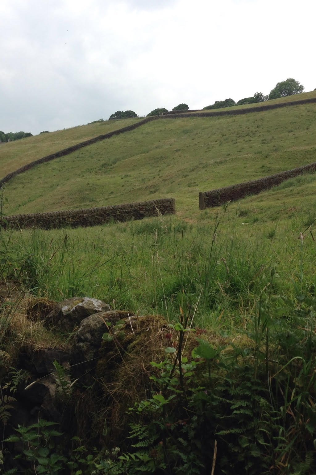 Stone walls dividing the land of West Yorkshire hill side