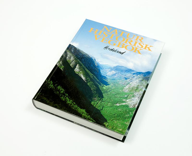 Hardcover bok 2
