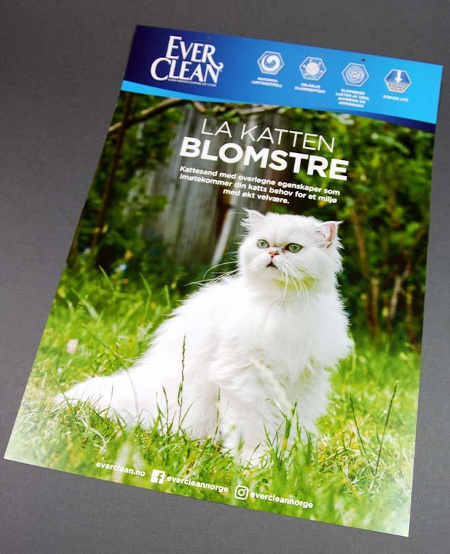 Plakat la katten blomstre EC.jpg