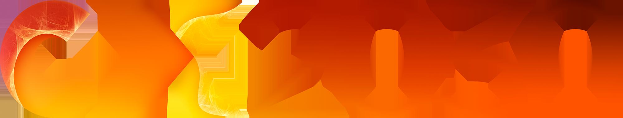 CX2030 logo horizontal 2K.png