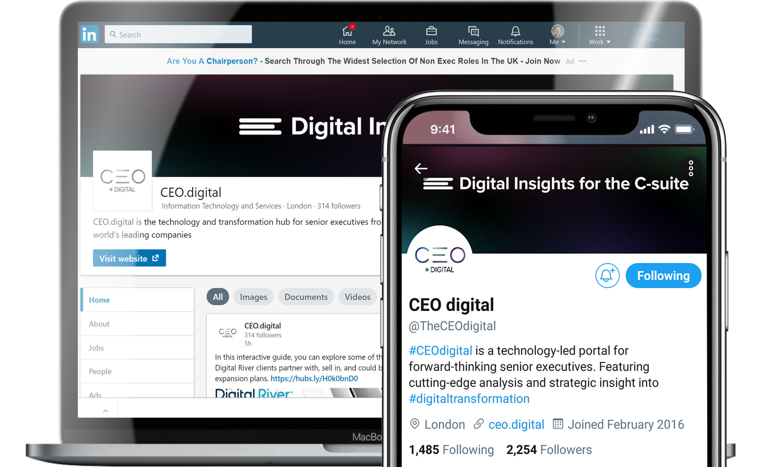 CEO.digital branding applied to LinkedIn and Twitter profiles