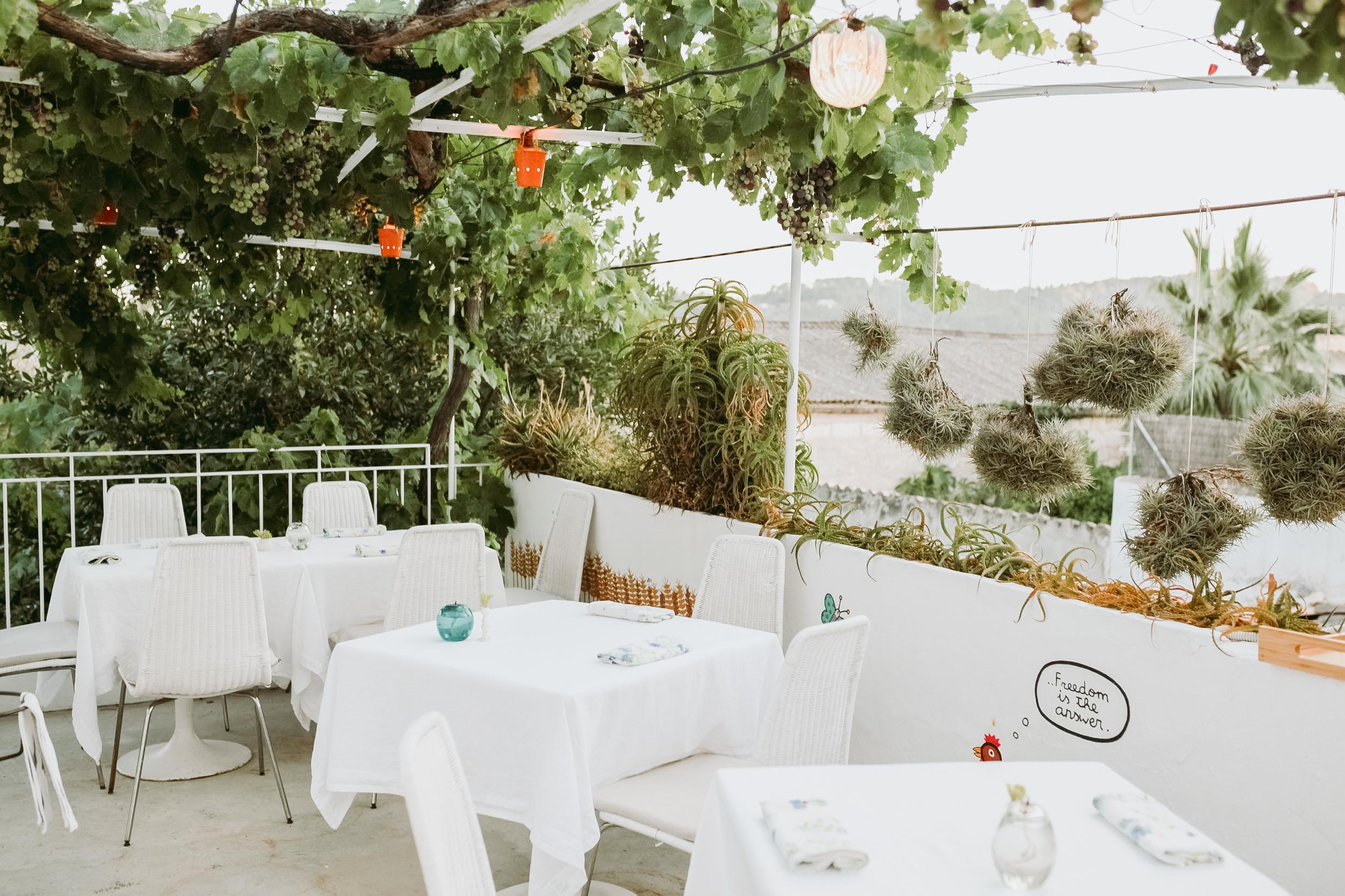 RESTAURANT CANATONETA - Ein Lieblingsort ganz in der Nähe von Can Miret: das Restaurant Ca Na To Ne Ta – geleitet von Frauen. Viele kleine Gerichte, mit lokalen Spezialitäten und Produkten neu interpretiert, überraschen und verwöhnen Gaumen und Augen gleichermaßen.