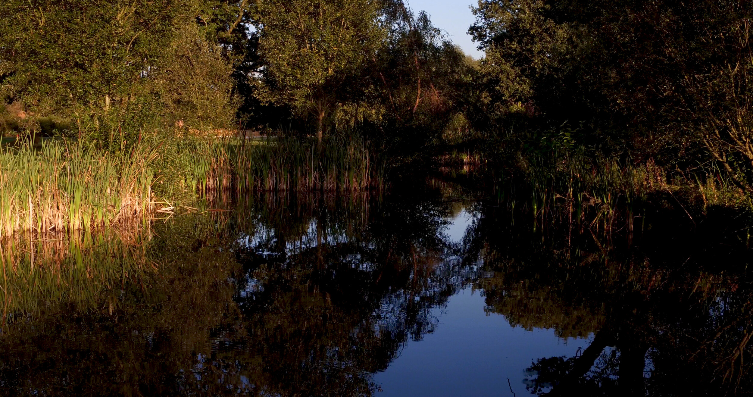Ladbrook low over the water.jpg