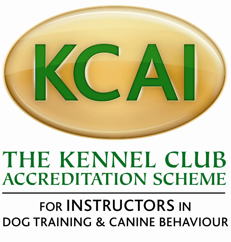 KCAI logo large-min.JPG