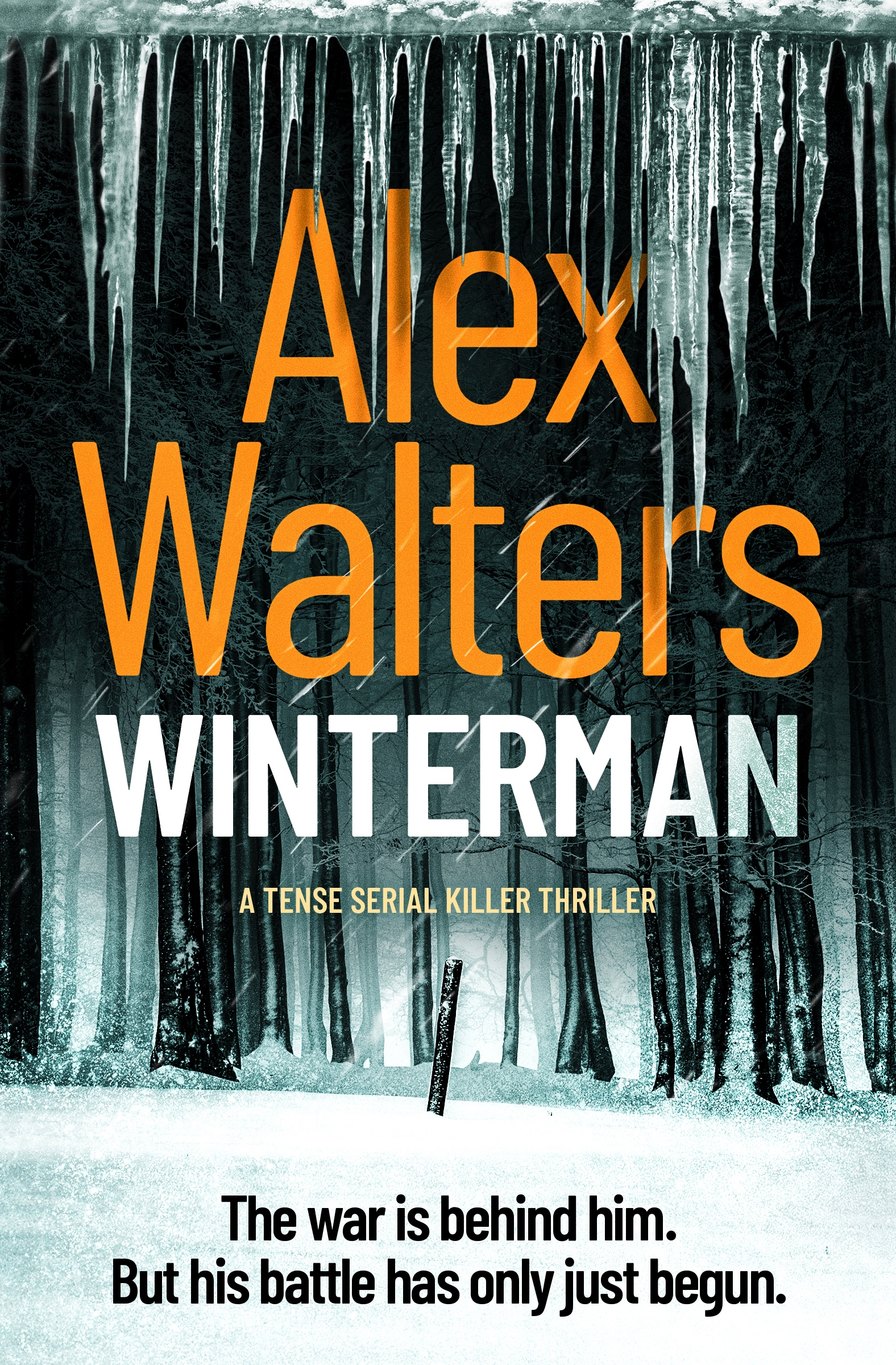 Winterman-Kindle.jpg