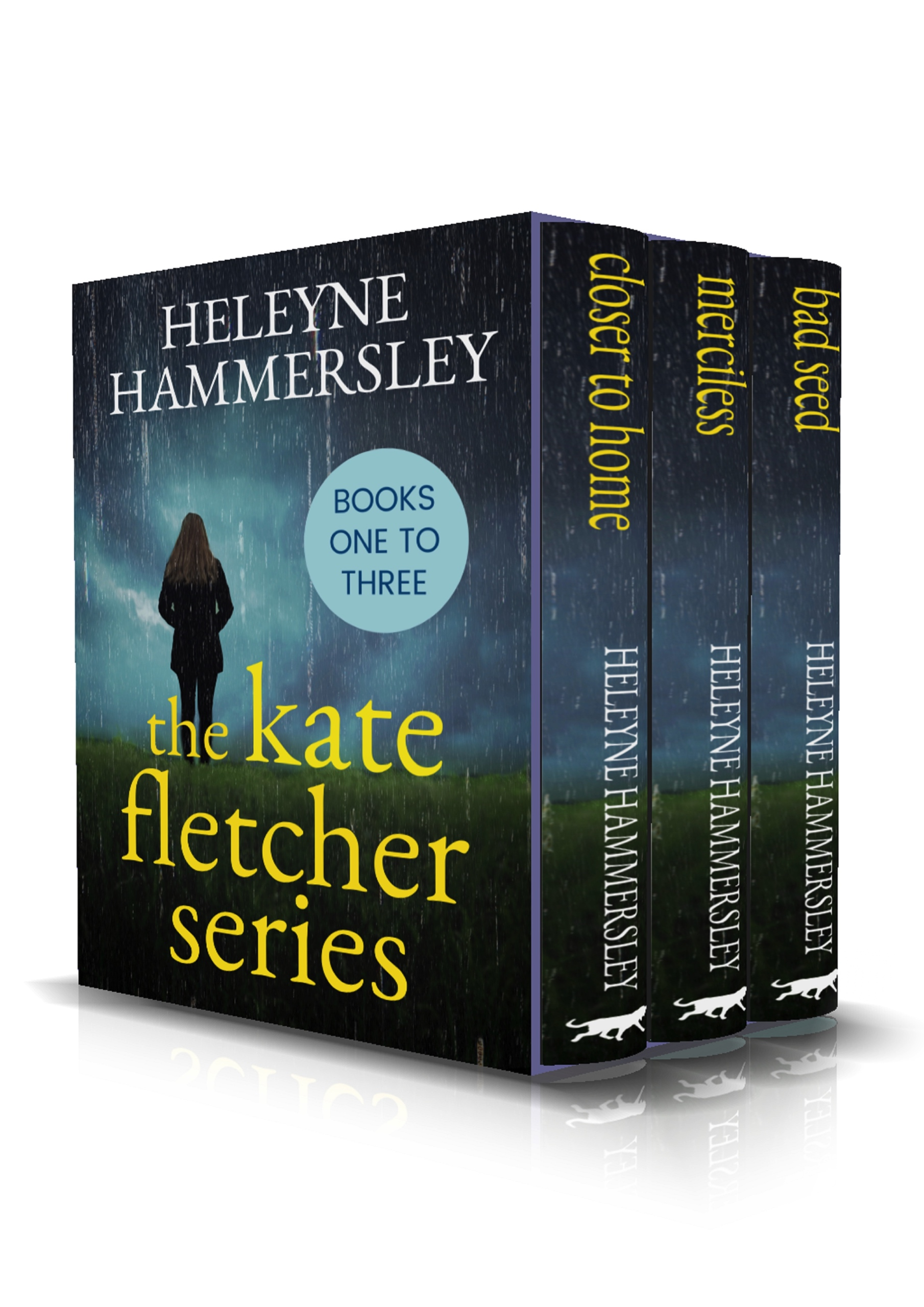 The-Kate-Fletcher-Series-Kindle.jpg