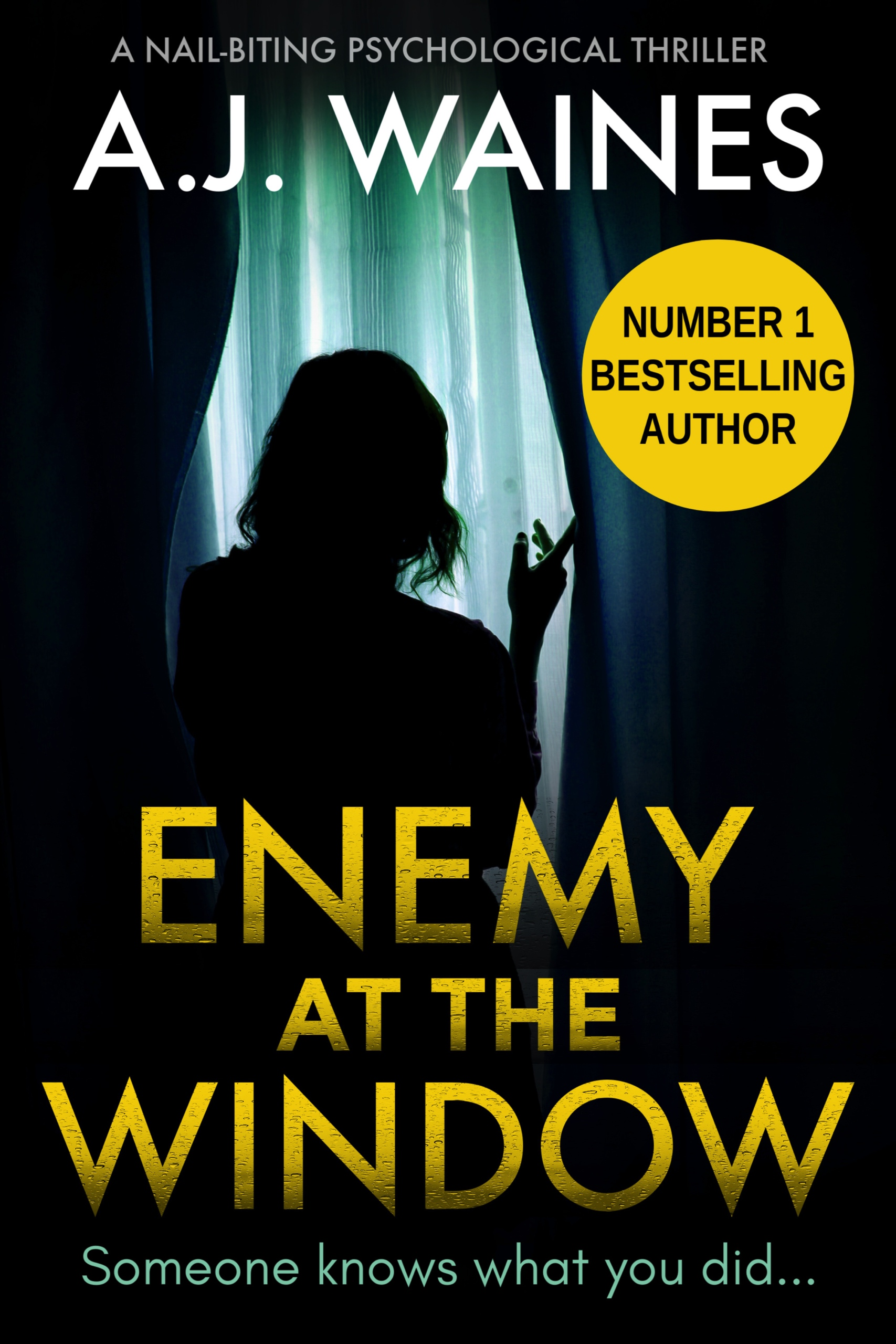 Enemy-at-the-Window-Kindle.jpg