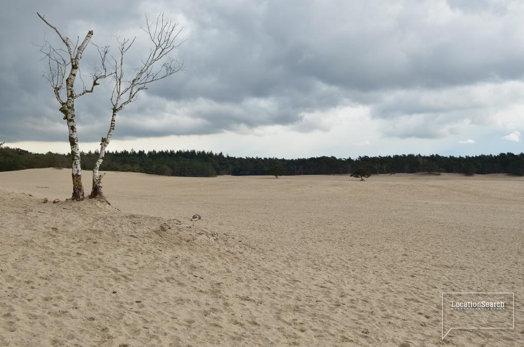 landscape-02.jpg
