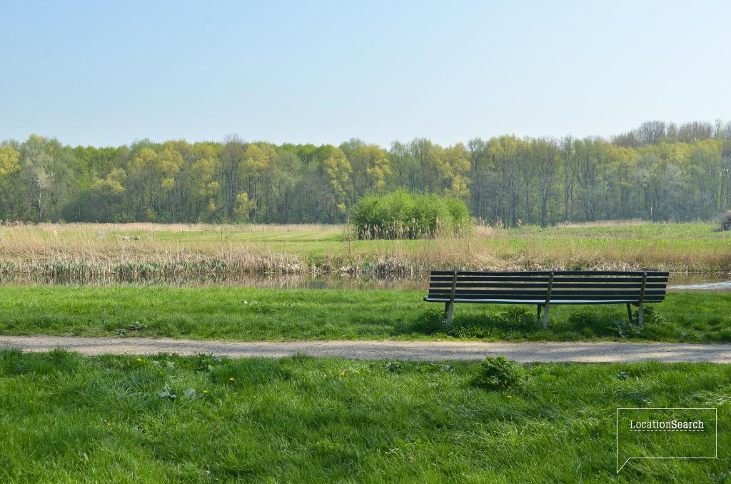 landscape-33.jpg
