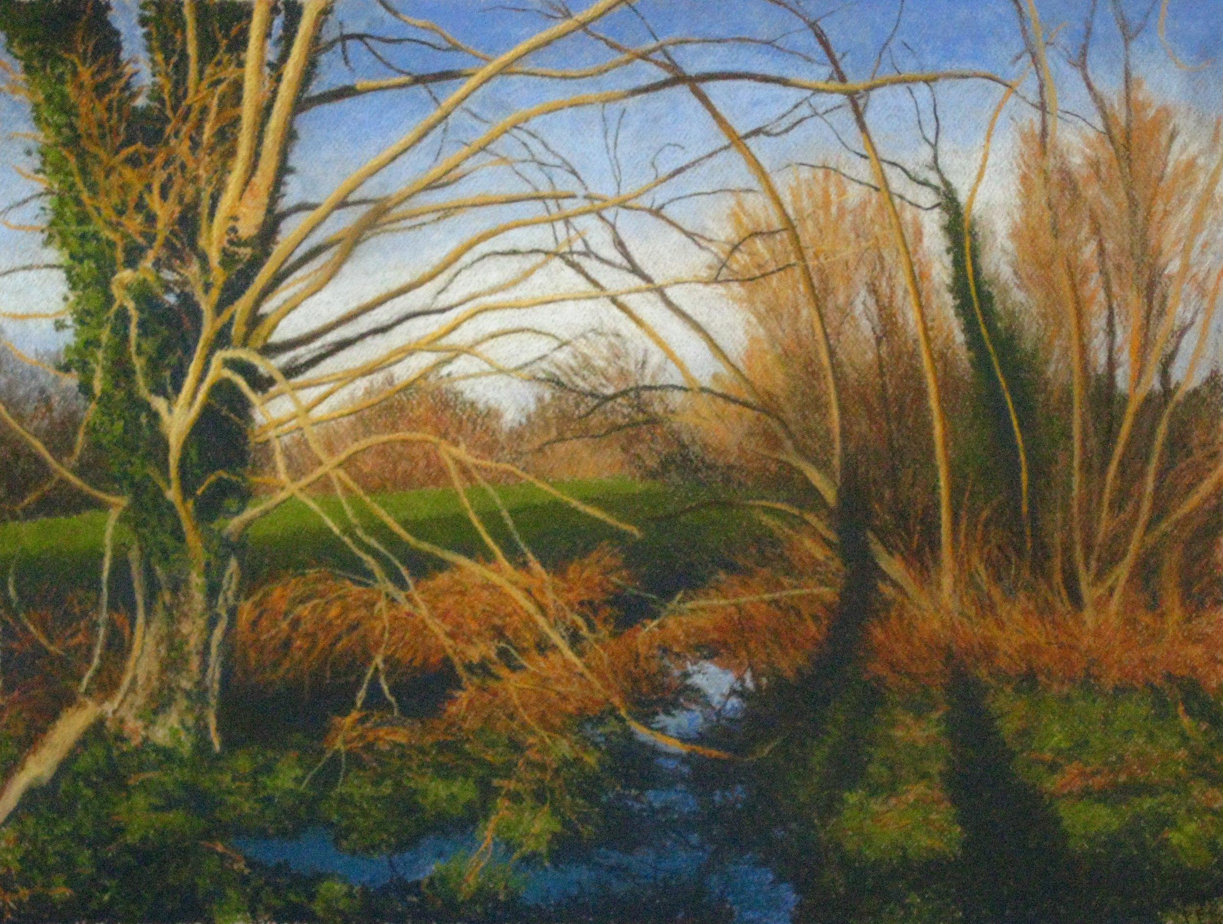 flood trees2 Cray Meadows 12 13.jpg