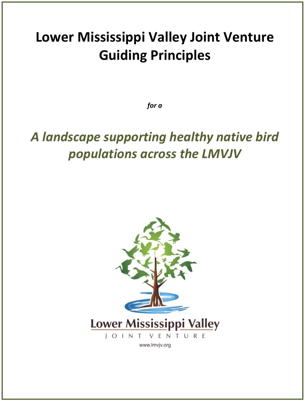 LMVJV guiding principles.png