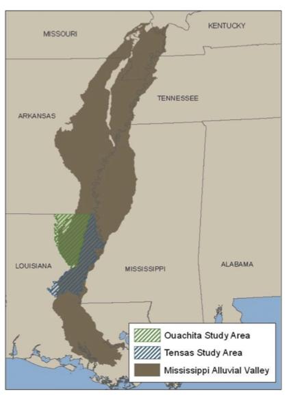 Ouachita-Tensas HGM, Louisiana - Download the zip file of the Ouachita Basin PNV GIS data (24.2 MB)View or Download a PDF of the Ouachita and Tensas Basin PNV Field Atlas