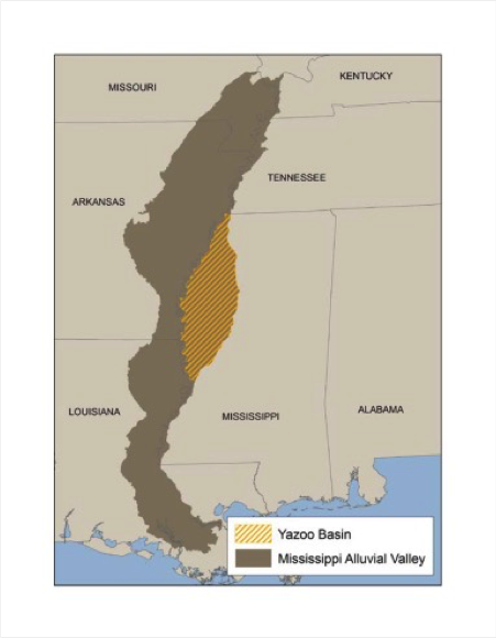 Yazoo Basin HGM, Mississippi - Download the zip file of the Yazoo Basin PNV GIS data (39.7 MB)View or Download a PDF of the Yazoo Basin PNV Field Atlas