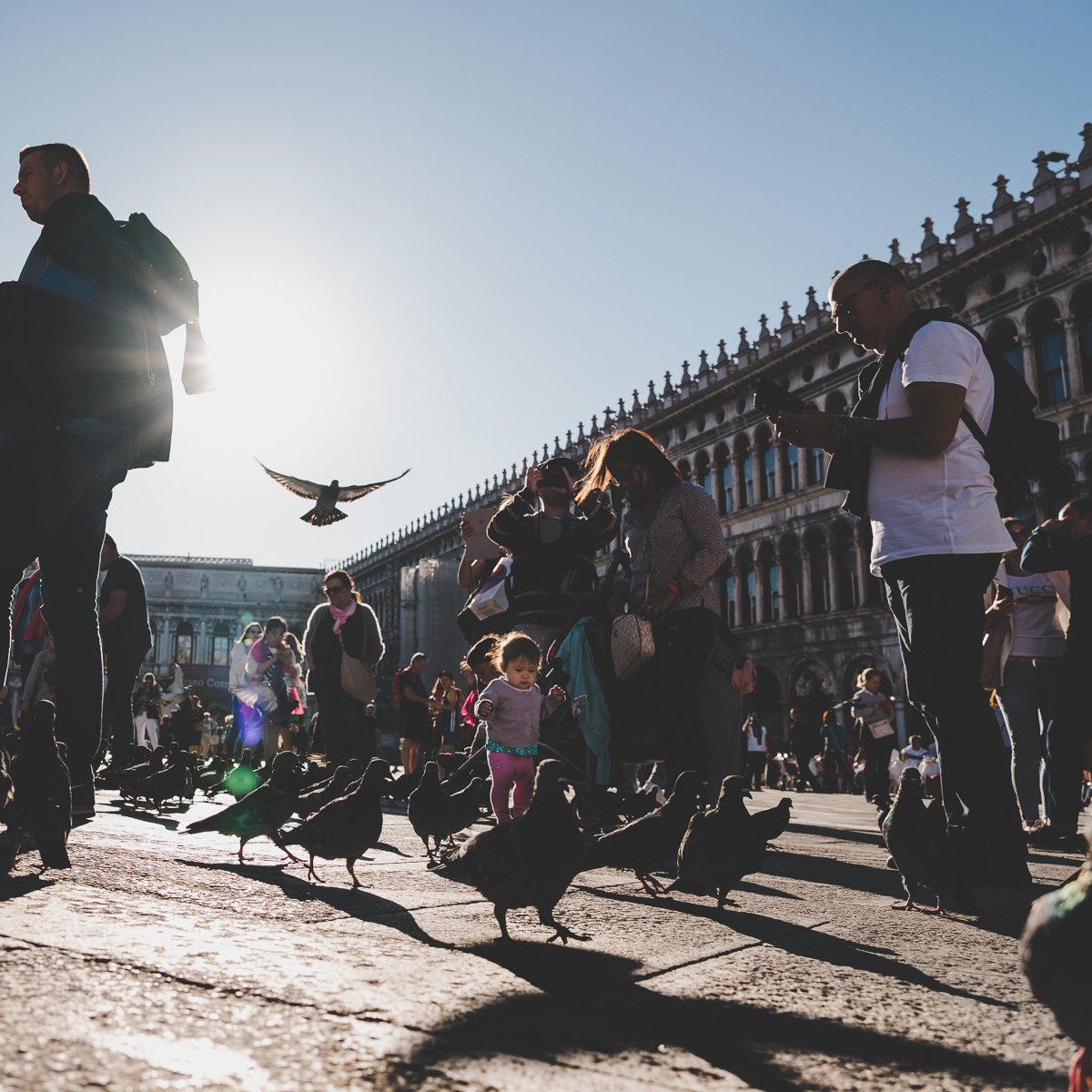 Piazza San Marco - 2018