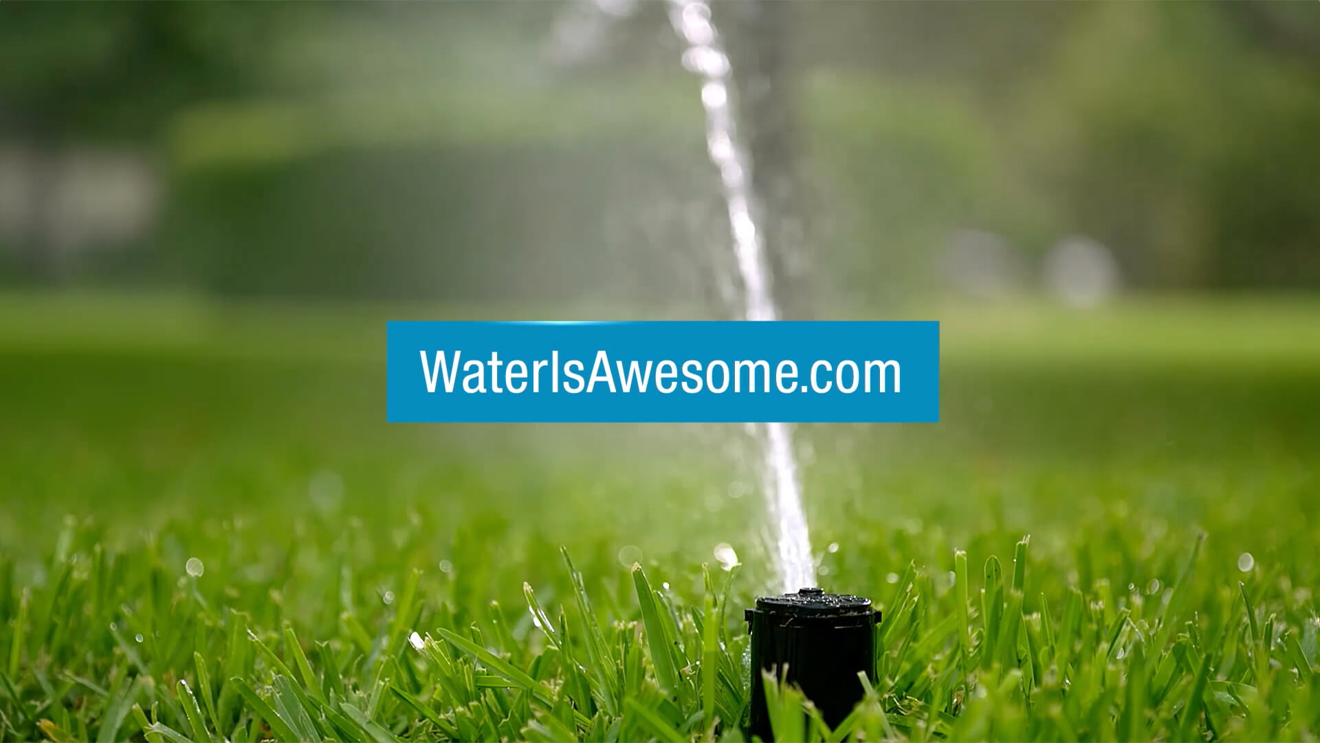 Reveal Film and Video Productions Water Is Awesome Television Campaign The Richards Group.jpg