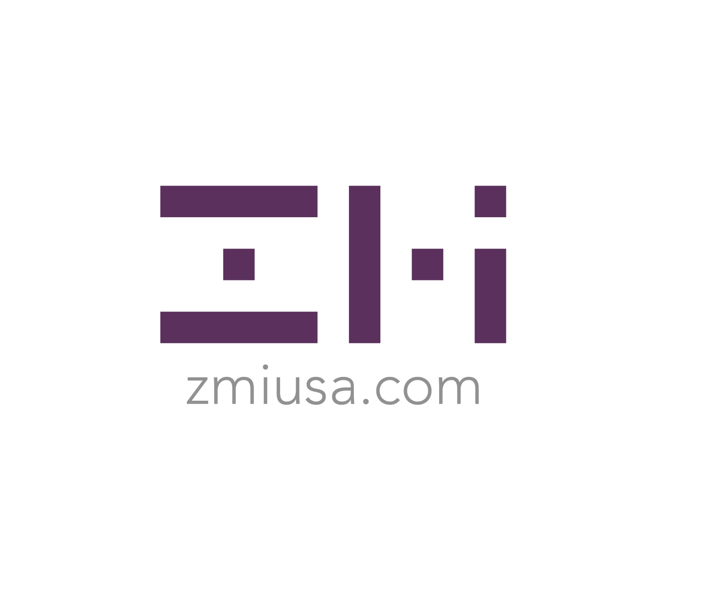 Logo-ZMI for site.jpg