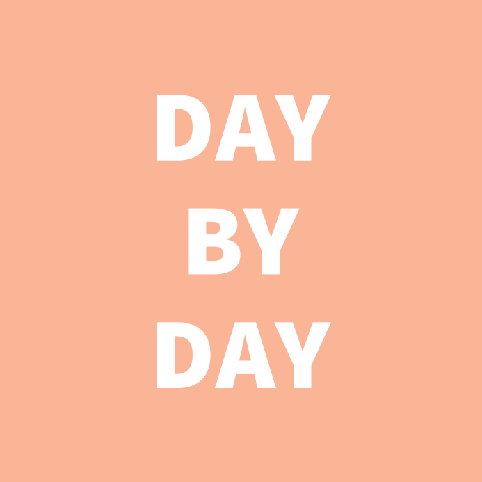 day-by-day.png