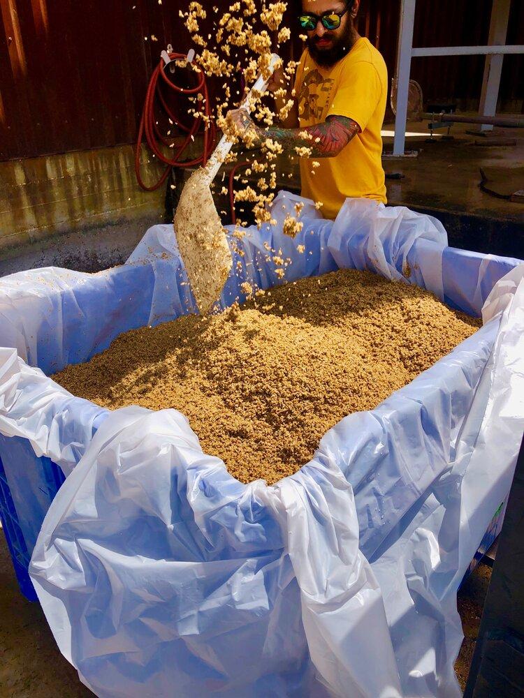 Collecting Spent Grain from Alamo Brewery, San Antonio