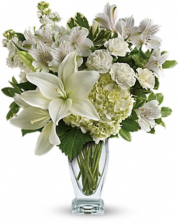 Purest Love Bouquet    A stunning statement of your purest love, this mix of hydrangea and lilies in a Couture vase will take their heart away. This snow-white bouquet includes hydrangea, asiatic lilies, alstroemeria, miniature carnations, stock and fresh green pittosporum. Delivered in a Couture vase.    Buy Now>>