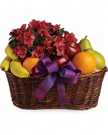 Alfa's Fruits and Blooms Basket    Here's a tasteful gift for any occasion. Fruit and flowers, what could be better than that?A big wicker basket comes overflowing with apples, bananas, pears and oranges that surround a hot pink azalea plant. This basket is ripe for giving!    Buy Now>>