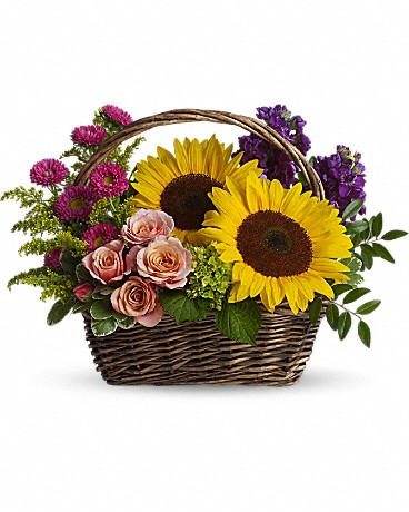 Alfa's Picnic in the Park    It's a lovely basket that's chock full of fabulous flowers.Peach spray roses, large yellow sunflowers, miniature green hydrangea, purple stock, hot pink matsumoto asters and more are delightfully arranged in a charming wicker basket.    Buy Now>>